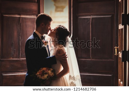 portrait silhouette of the wedding couple of a husband and wife who kiss after the wedding, a stylish man in a wedding suit kisses a girl in a wedding dress #1214682706