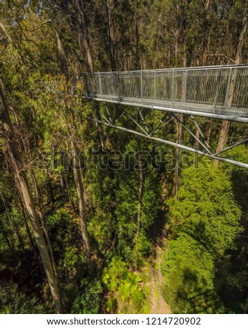Great Otway National Park. Otway fly tree top walk. Walk among the tops of trees in the Australian forest, near the town of Apollo Bay (which is located on the great ocean road).  #1214720902