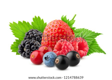 wild berries mix, strawberry, raspberry, currant, blueberry, cranberry, blackberry isolated on white background, clipping path, full depth of field #1214788639