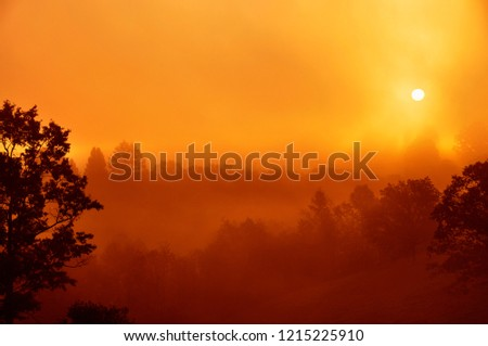 Misty Mountain Sunrise, Webster County, West Virginia, USA #1215225910