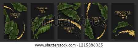 Vector tropical banners set. Banana leaf with gold splash on black background. Exotic botany for cosmetics, spa, perfume, health care products, aroma, tourist agency, summer party invitation #1215386035