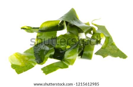 Laminaria (Kelp) Seaweed Isolated on White Background #1215612985