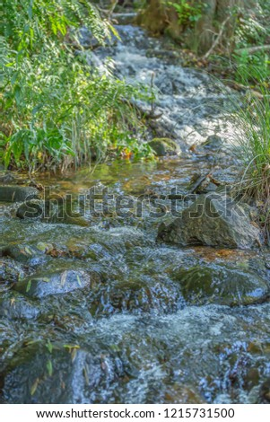 Theme river, river in mountain, margins with rocks and vegetation and mirror image in water in Portugal #1215731500