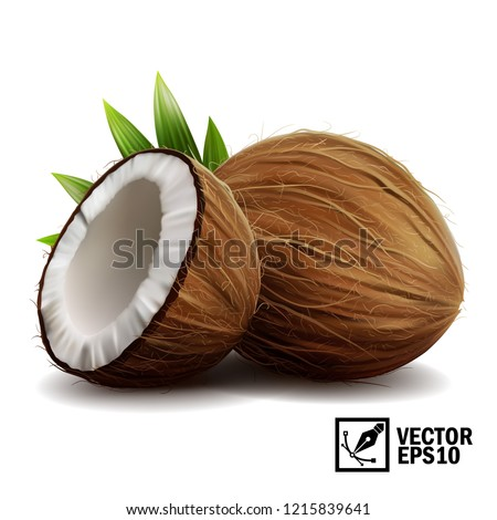 3D realistic isolated vector set of whole coconut, coconut halves and palm leaves #1215839641