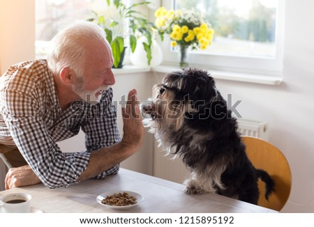 Cute dog giving five with paw to a senior man at dining table with food in small plate in front of him  #1215895192