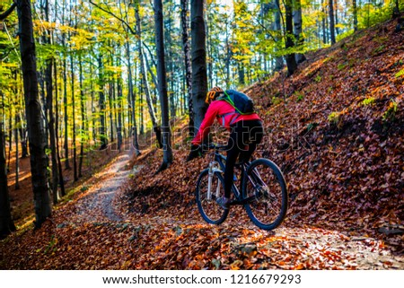 Cycling, mountain bikeing woman on cycle trail in autumn forest. Mountain biking in autumn landscape forest. Woman cycling MTB flow uphill trail. #1216679293