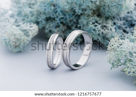 Pair of white gold wedding rings with diamonds in womens ring and matte surface in mens ring. Silver wedding rings on blue moss background #1216757677
