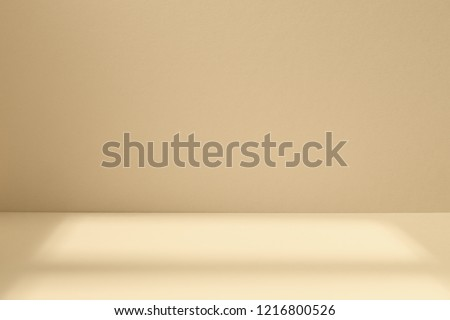 Empty light studio space with deep windows shadow. Sparse template and background #1216800526