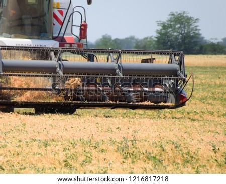 Fields near Krasnodar, Russia - June 21, 2018: Harvesting peas with a combine harvester. Harvesting peas from the fields. #1216817218