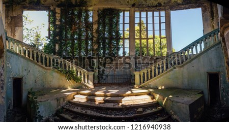 Ruined mansion interior overgrown by plants Overgrown by ivy windows and old staircase. Nature and abandoned architecture, green post-apocalyptic concept. #1216940938