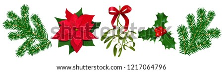 Set with Poinsettia, Holly berry, Mistletoe with berries and red bow, fir branches #1217064796
