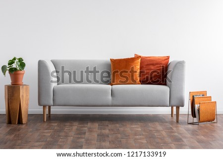 Couch with pillows between wooden table with plant in pot and newspaper organizer, real photo with copy space on the empty white wall #1217133919