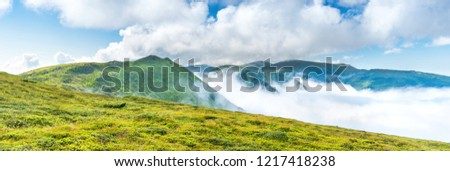 Panorama of green mountains in the clouds. Landscape view on green hills in fog at sunset #1217418238