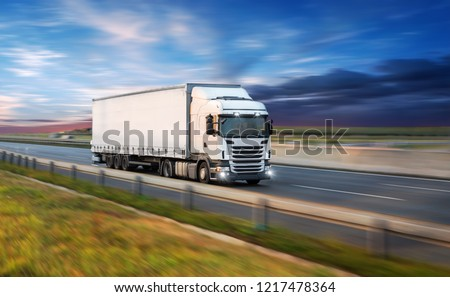 Truck with container on highway, cargo transportation concept. Shaving effect. #1217478364