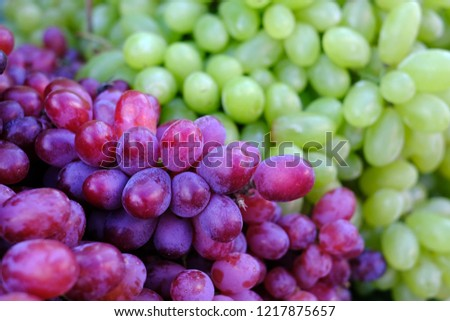 Healthy fruits Red wine grapes background/ dark grapes/ blue grapes/wine grapes,Red wine grapes background/dark grapes,blue grapes,Red Grape in a supermarket local market bunch of grapes ready to eat #1217875657