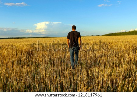 young man in  t-shirt and jeans stands with his back in  field of ripe golden wheat. #1218117961