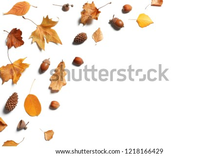 Flat lay composition with autumn leaves and space for text on white background #1218166429