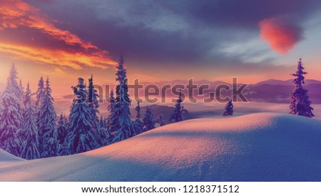 Scenic image of Winter Landscape during sunset. Frosty morning with Colorful sky, calm wintry scene. Ski resort. Impressive picture of wild area. Amazing wintry background. Fantastic Christmas Scene. #1218371512