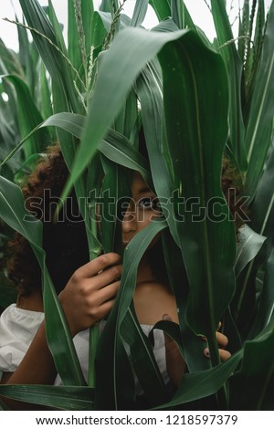 Young African American woman in a white dress harvests corn.  Beautiful   afro girl walking and hiding in the tropics . #1218597379