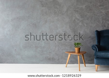 Velvet armchair next to small wooden table with green plant in pot, real photo with copy space on concrete wall