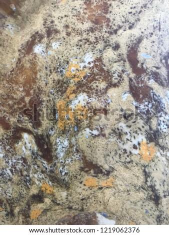 Beautiful mural markings #1219062376