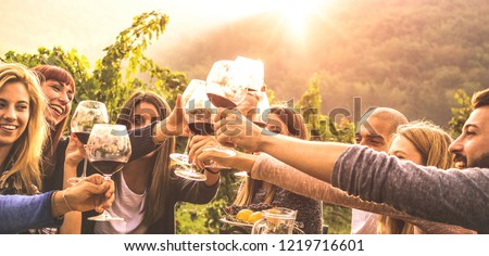 Young friends having fun outdoor - Happy people enjoying harvest time together at farm house winery countryside - Youth friendship concept - Hand toasting red wine at pic nic in vineyard before sunset #1219716601