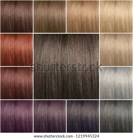 Color chart for tints. Hair color palette with a wide range of swatches. Dyed hair color samples arranged on a card in neat rows. Tints. Colour set. Hair texture in diferent colours.