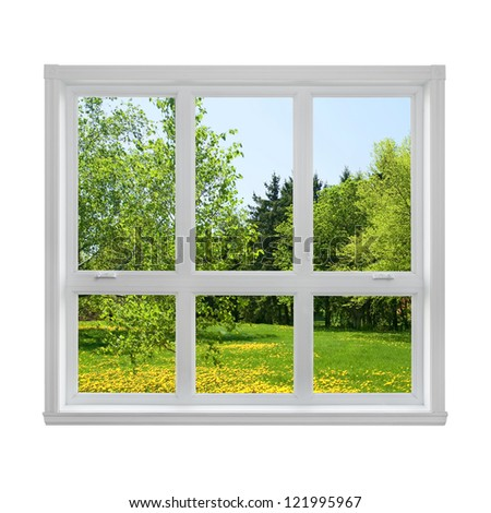 Spring dandelion lawn and green trees seen through the window. #121995967