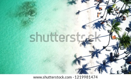 Aerial of beautiful tropical white sandy beach in Punta Cana, Dominican Republic #1219981474