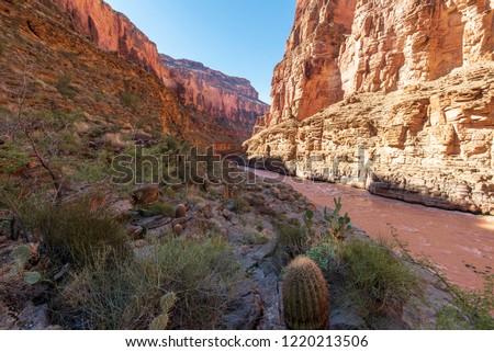 Grand Canyon Arizona #1220213506