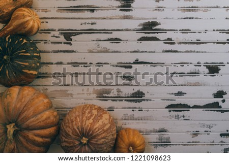 Autumn pumpkins over old white wooden background. Happy Thanksgiving with pumpkin, yellow squash. Mix of pumpkins. Top view with copy space. Toned image.