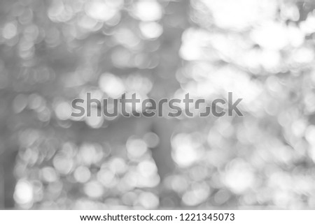 white blurred backdrop of nature, circle white wallpaper, gray bokeh background #1221345073