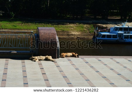 Tyumen, Russia-07.20.2014.Embankment of the Tura River in Tyumen #1221436282
