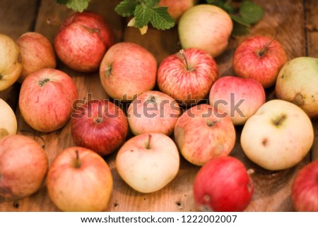 Many red apples on a wooden table #1222002007