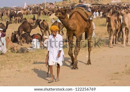 PUSHKAR, INDIA - NOVEMBER 19: Pushkar Camel Mela (Pushkar Camel Fair) on November 19, 2012 in Pushkar, Rajasthan, India. This fair is the largest camel trading fair in the world. #122256769