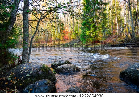 Autumn forest river landscape. Forest river in autumn season. Autumn forest river stones scene. Autumn forest river water view #1222654930