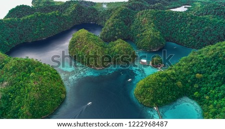 Aerial view of Sugba lagoon. Beautiful landscape with blue sea lagoon, National Park, Siargao Island, Philippines. #1222968487