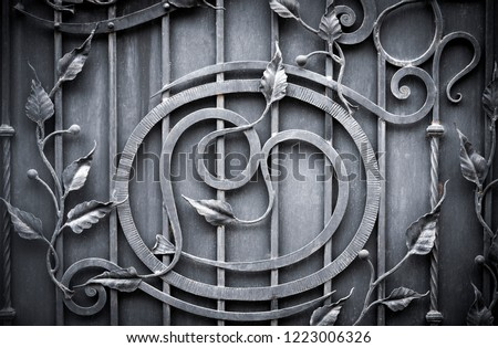 Wrought-iron gates, ornamental forging, forged elements close-up. #1223006326