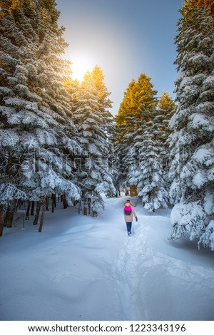 Beautiful winter landscape with snow covered trees. Girl doing trekking in the snow. Uludag National Park, Bursa, Turkey.  #1223343196