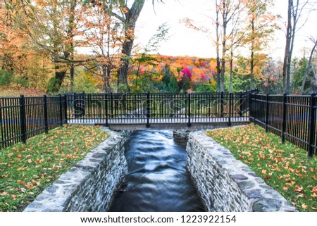 Bridge crosses creek in a park. Fall colored trees in the background. #1223922154