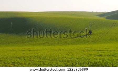 green wheat fields in the morning with shadows in south Moravia #1223936899