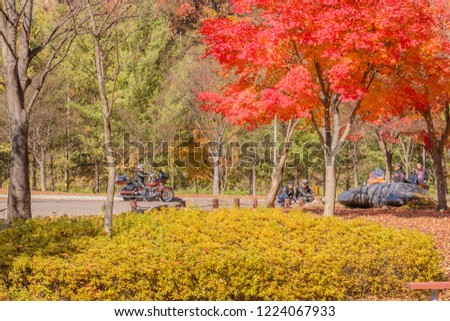 Gumsan, South Korea; November 4, 2018: Group of unidentified Asian men with their motorcycles enjoying fall day at public park where trees are in fall colors. #1224067933