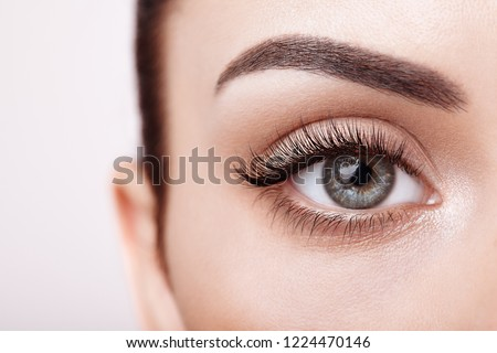 Female Eye with Extreme Long False Eyelashes. Eyelash Extensions. Makeup, Cosmetics, Beauty. Close up, Macro #1224470146