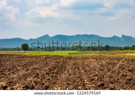 The land finished plow before planting and beautiful mountain backdrop.