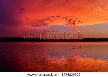 Stunning Sunset Sky Reflected on Relaxing Lake With Canadian Geese Flying Overhead #1224839929