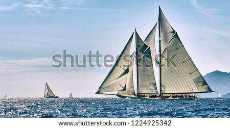 Sailing ship race. Classic yacht under full sail at the regatta #1224925342