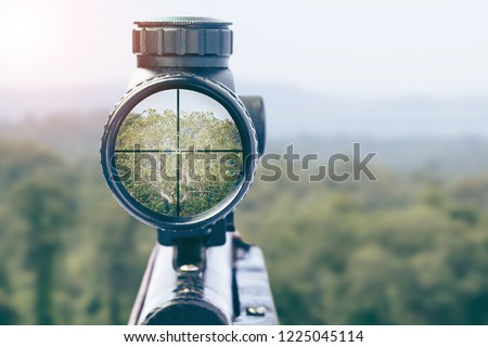 rifle target view on Natural Background. Image of a rifle scope sight used for aiming with a weapon #1225045114