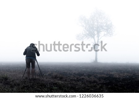 photographer taking photo of lone tree in thick morning fog. photographing tree in Thailand national park. low visibility due to water mist. #1226036635