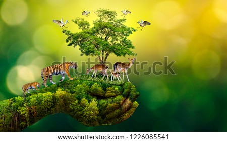 Concept Nature reserve conserve Wildlife reserve tiger Deer Global warming Food Loaf Ecology Human hands protecting the wild and wild animals tigers deer, trees in the hands green background Sun light #1226085541