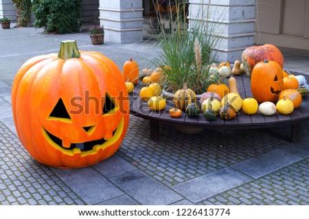 Halloween Pumpkin Orange #1226413774